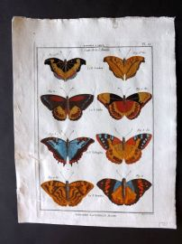 Diderot C1790 Antique Hand Col Print. Butterflies 27
